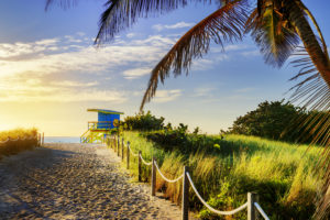 Traveling to Miami This Winter? You've Got to Visit the Keys