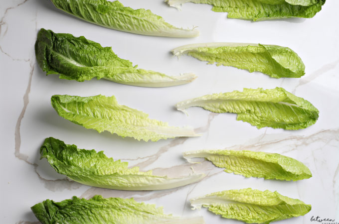 How to Keep Your Romaine Leaves Crisp. You've spent all this time checking...now make that lettuce last