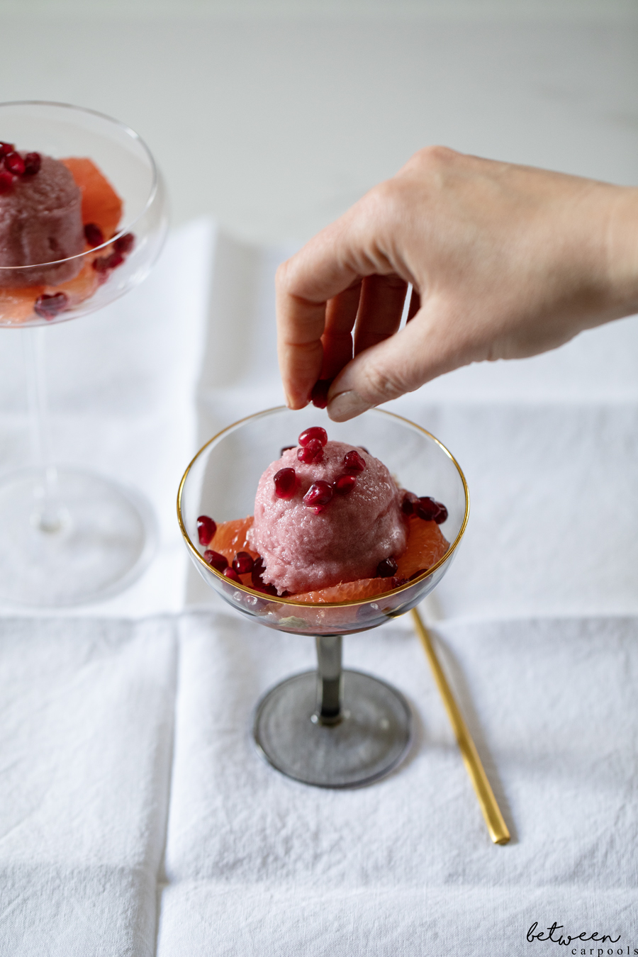 This Is the Dessert My Family Enjoyed the Most. Grapefruit + Pomegranate + Sorbet. You can't go wrong with this light and refreshing way to end a Yom Tov meal.