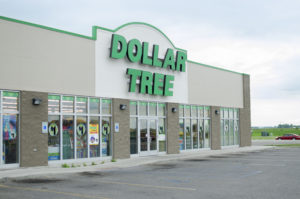 6 Top Dollar Tree Finds