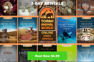 Bring Torah to Life in Your Own Home! The Living Torah Museum Can Help.
