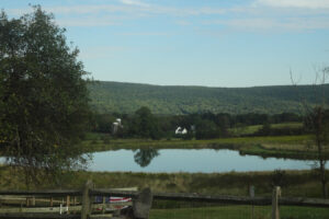 This Chol Hamoed: Farms to Enjoy in the Fall