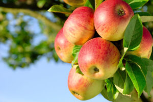 You Have a Fresh Start This Rosh Hashanah: Start By Loving Who You Are